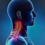 Neoplasie distretto testa-collo: cosa è richiesto all'Anatomo Patologo